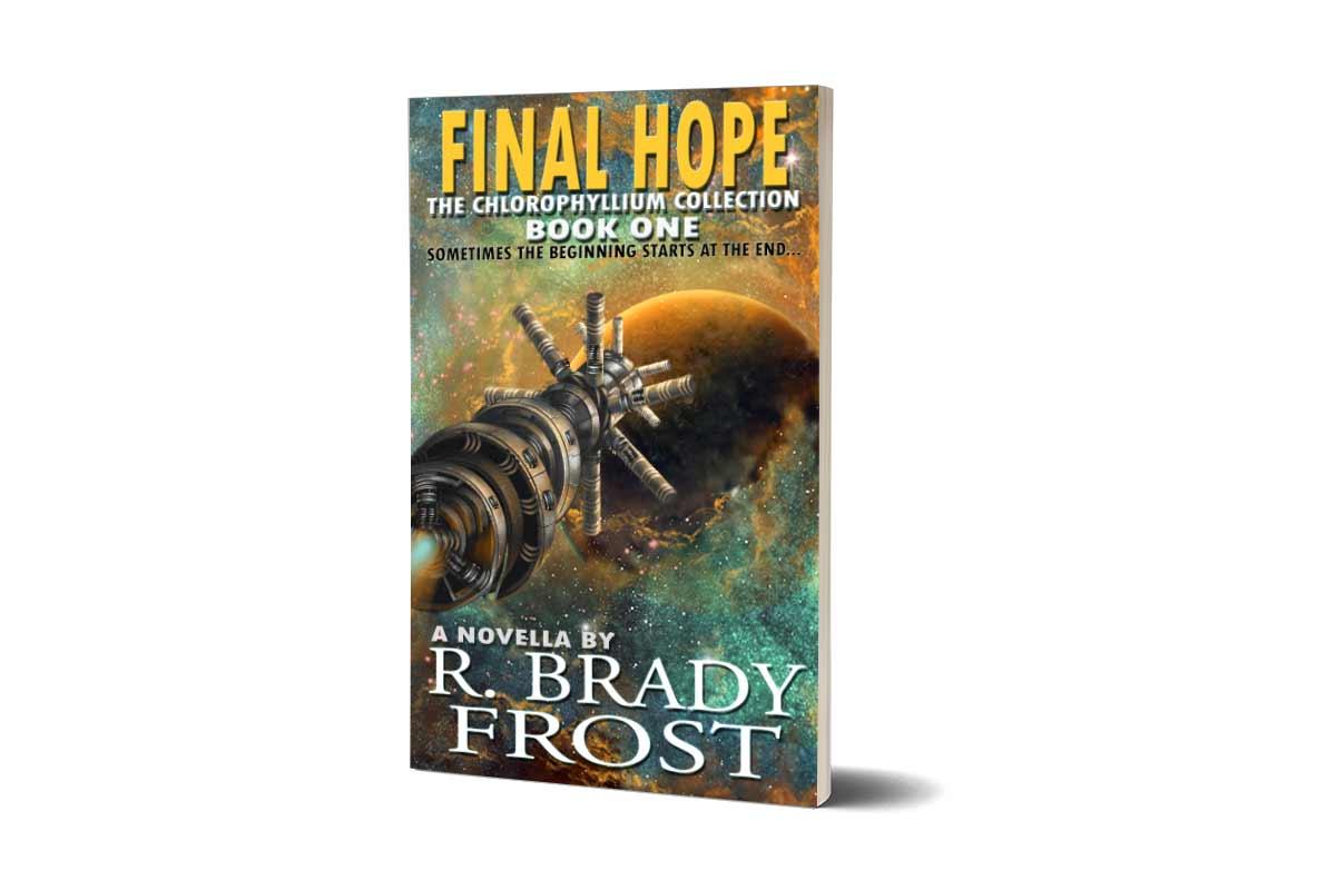 Final Hope 3d Paperback Image